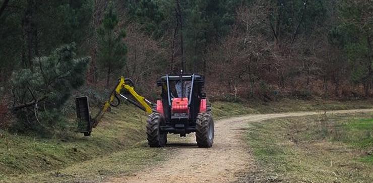fertaf-tractor-arrancando-pinos-740x363