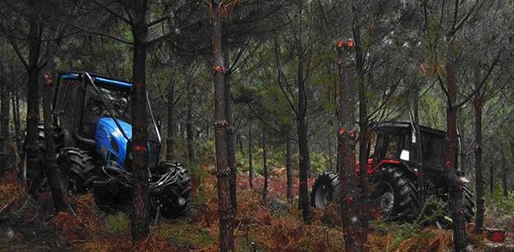 fertaf-tractores-limpiando-monte-740x363